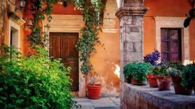 Plantas ideales para poner un toque mediterráneo en la casa